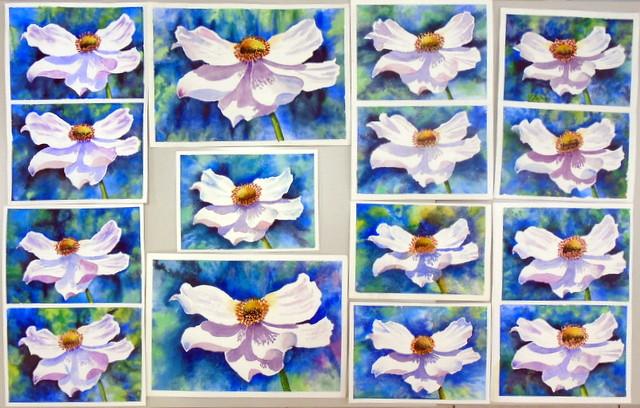 Many white flowers, by hj - DSC01783