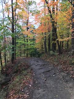 Brandywine Gorge Trail, Cuyahoga Valley National Park, Ohio