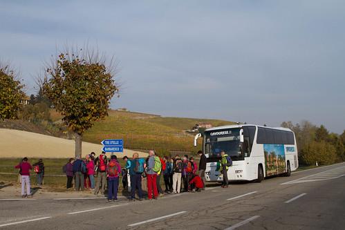 Trekking del barbaresco (Langhe) - 29/10/17