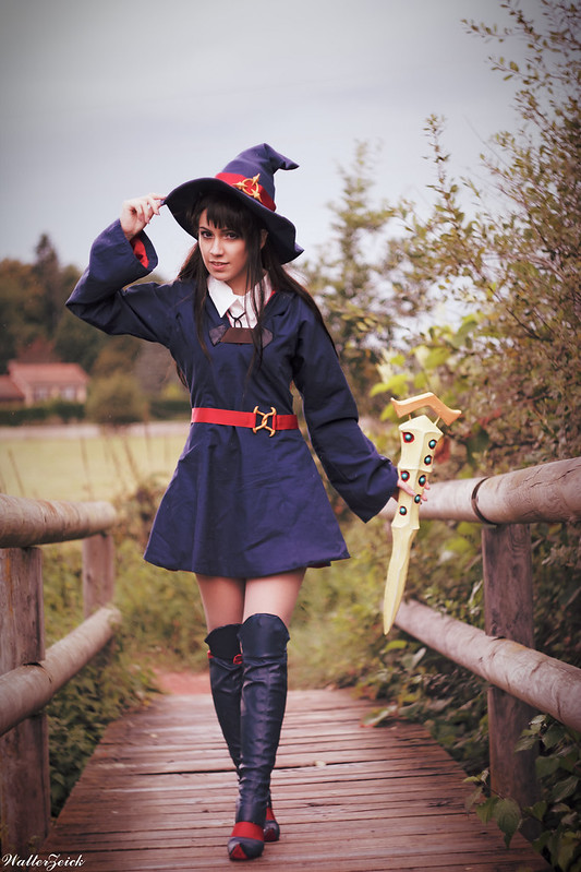 Cosplay - Page 5 26431687239_6f44ba773c_c