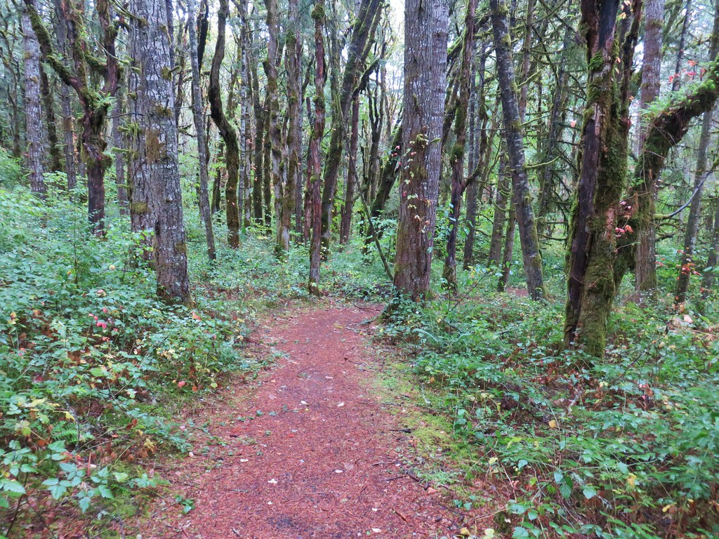 Inter-Tie Trail