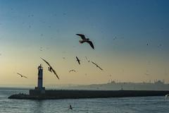 2013-Turquia-Istambul-0400.jpg