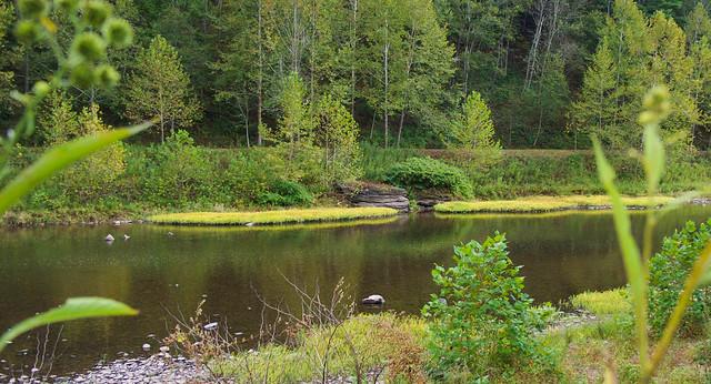 Pine Creek,PA