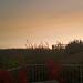Storm Ophelia sandy sunset