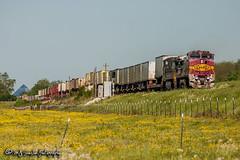 BNSF 880 | GE C40-8W | UP Brinkley Subdivision