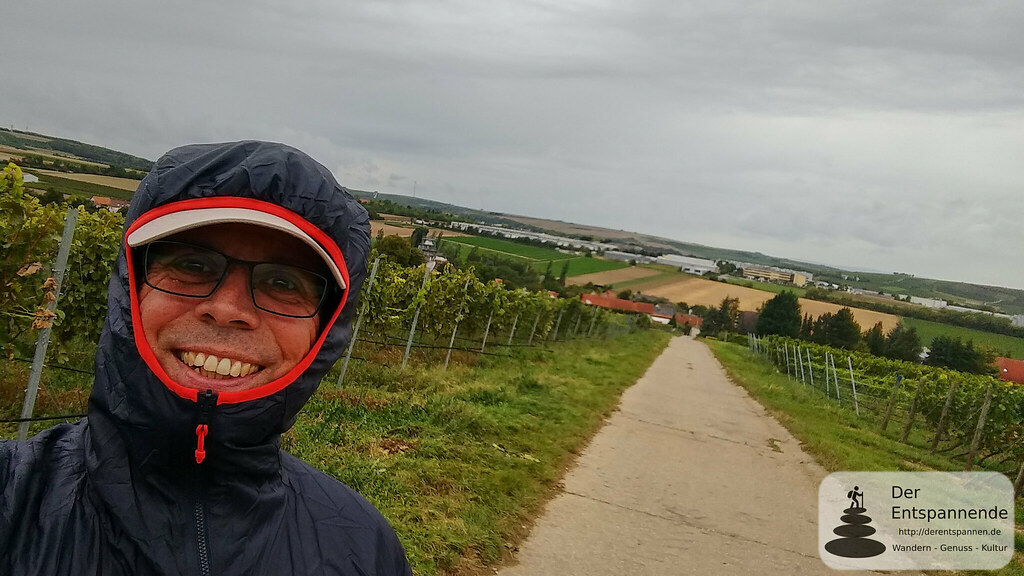 Der Entspannende in den Weinbergen über Dautenheim