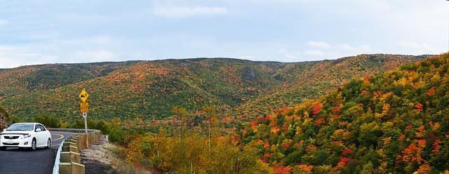 Fall colors3