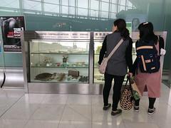 Illegal Wildlife Trade Awareness Display Hong Kong International Airport