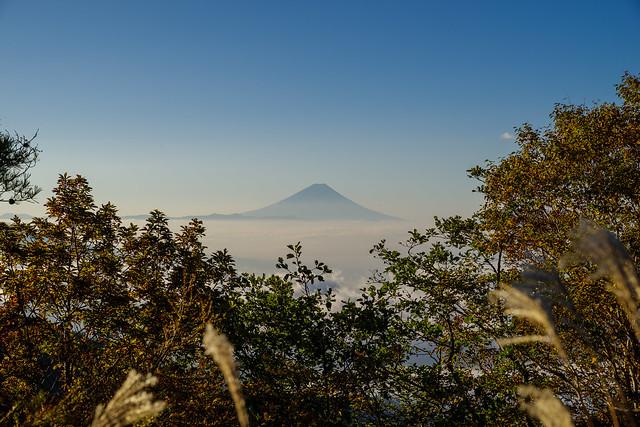 富士山@雲海展望台