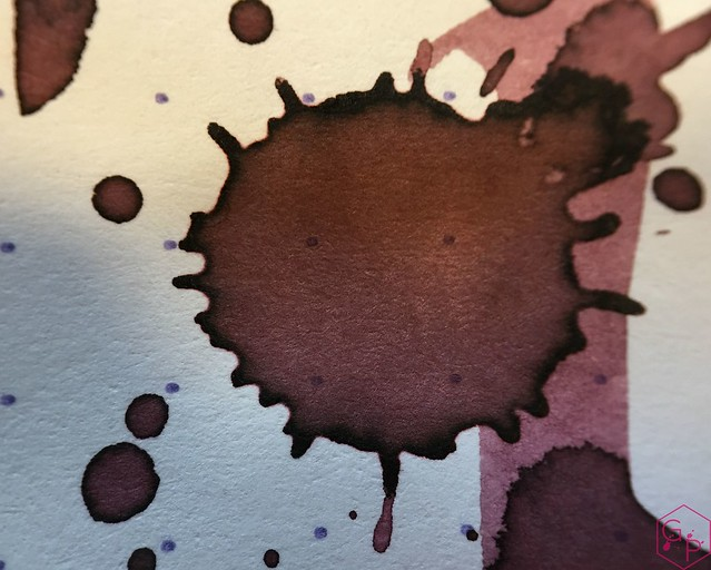Ink Shot Review @RobertOsterInk Plumb Nut @MilligramStore 10