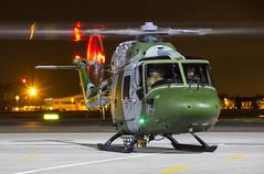 RAF Northolt Nightshoot XIII - Westland Lynx AH7 - Army Air Corps - XZ196