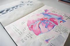 Giraffe´s heart infographics moleskine