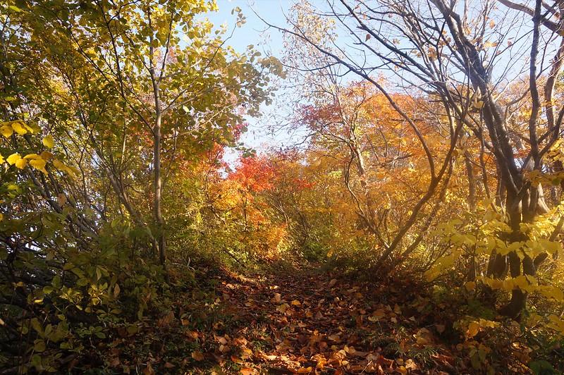 """Mountain-climbing path """"KAGAZENNJOUDOU"""""""