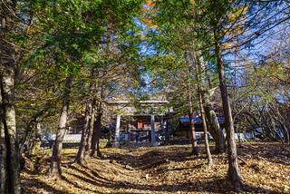 武甲山山頂の御嶽神社