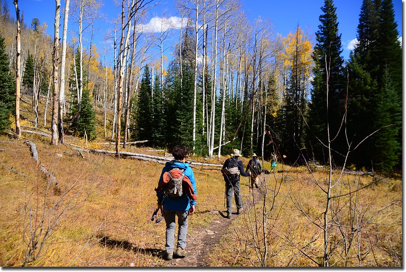 Gore Range Trail, Silverthorne (18)