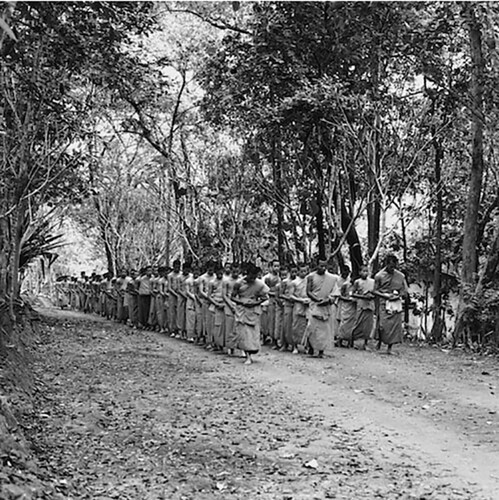 Photo from Meditation Exhibition showing a large group of monks practicing walking meditation in the forest. Courtesy of BHP