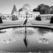 Syon House & Gardens -4 16102017-Edit.jpg