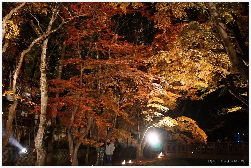 紅葉迴廊-紅葉祭-夜楓-30