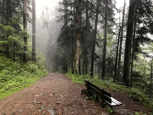 Vorarlberg, Austria 2017 151