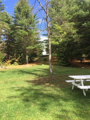 Picnic area at Lester B. Pearson Peace Park