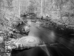 Ripley Creek
