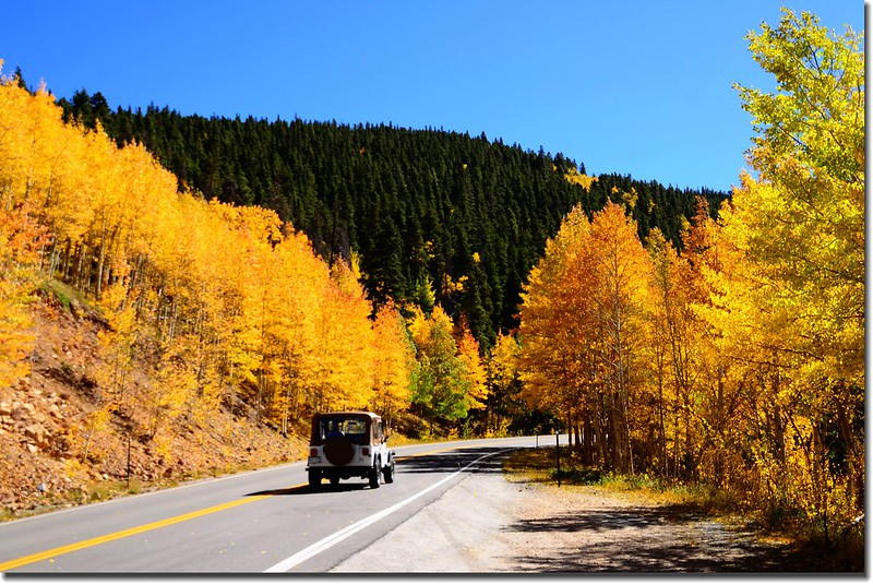 Fall colors, Mount Evans Scenic Byway, Colorado (47)