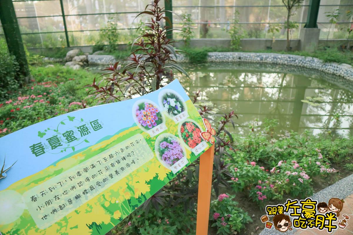 高雄金獅湖蝴蝶園-34