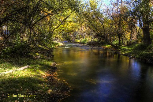usa colorado lakewood bearcreek forest cottonwoods creek waterway outdoors