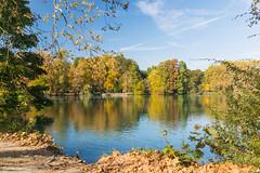 Lyon Le parc de la Tête d'Or aux couleurs de l'automne Octobre 2017
