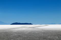 Salar d'Uyuni - Ile Inkahuasi