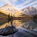 Autumn at Derborence - Wallis - Switzerland by Rogg4n