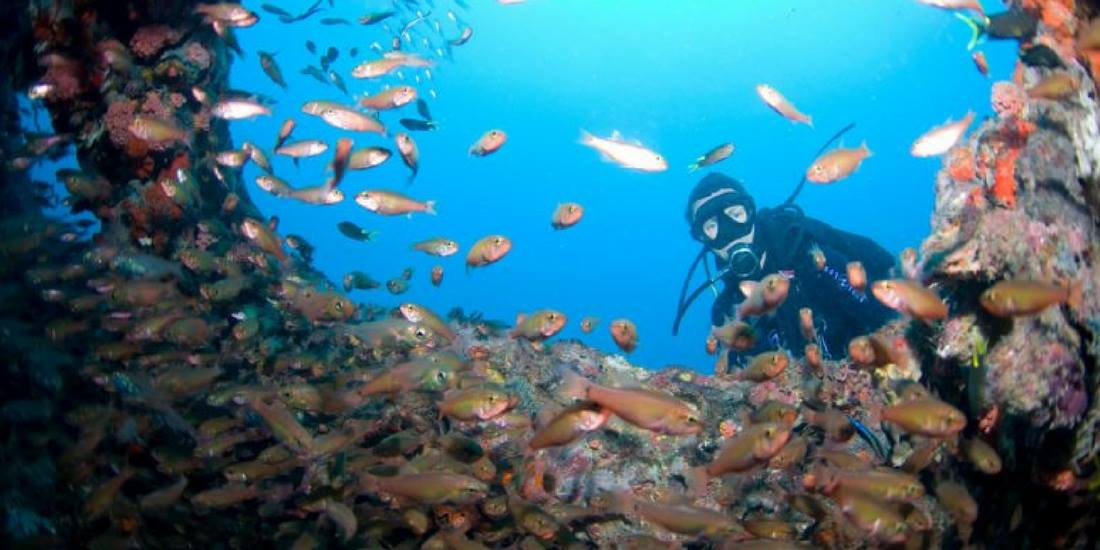 wreck diving Australia