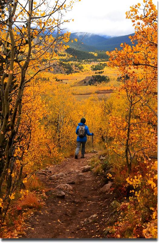 Taken from Colorado Trail, Kenosha Pass (29)