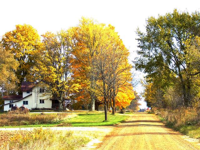 Autumn on Strange Highway