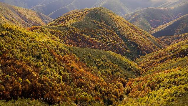 Últimos días de Otoño en la montaña Oriental Leonesa // Last days of Autumn in the Eastern Mountain of León