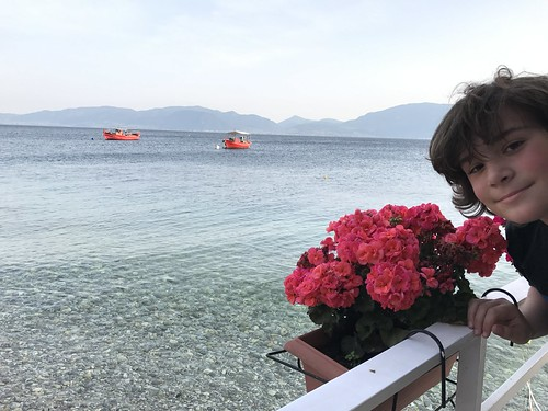 greece island evia boat flower portrait landscape ciel sky rose