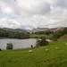Loughrigg Tarn  4