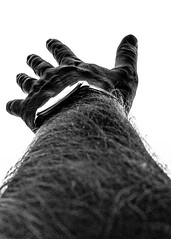 75 of 365: Reach