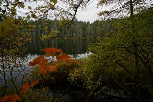 rollins pond