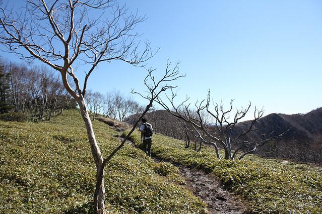 20111029_日光白根山_0076