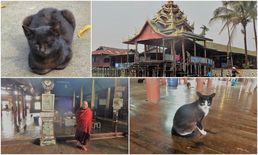 Klasztor skaczących kotów, Inle