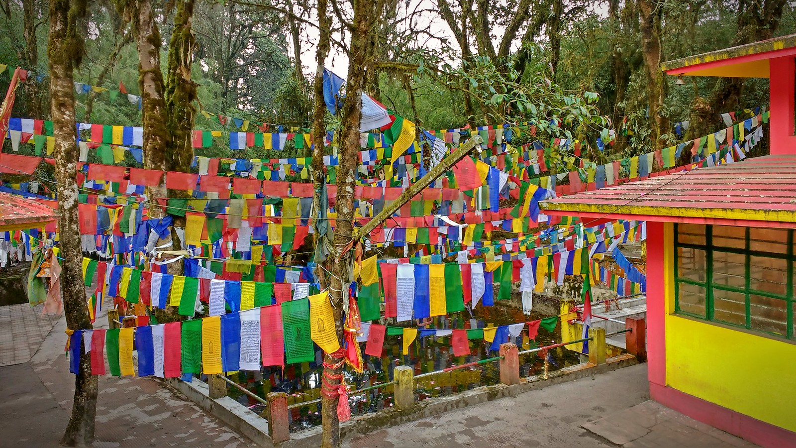 Prayer flags!