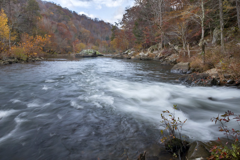 Confluence of Caney Fork River and Big Spring (creek), Bridgestone Firestone Centennial Wilderness WMA, White County, Tennessee
