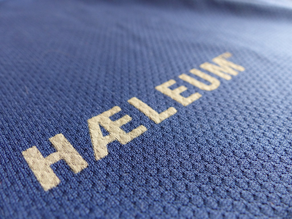 Haeleum Reccan insect repellent shirt (4)