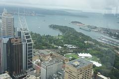 Sydney Tower Eyes