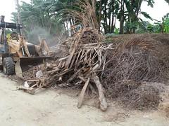 Obreros municipales realizan limpieza de escombros en UE Trajano Centeno y sectores aledaños