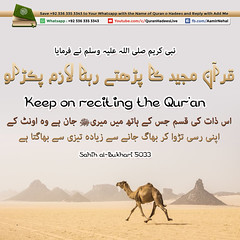 Keep-on-reciting-the-Qur'an