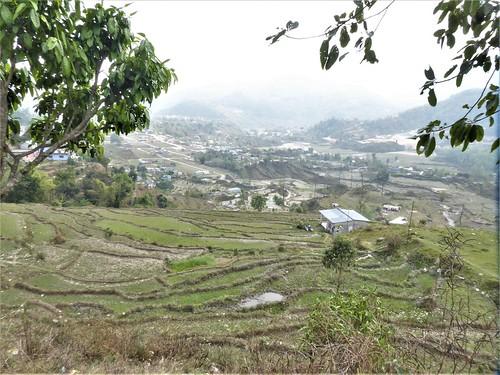 n-pokhara-Pagode-Paix-descente (12)