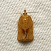 Argyrotaenia franciscana (Orange Tortrix Moth) - Hodges # 3612