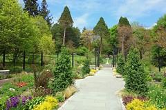morris-arboretum-174967_1280
